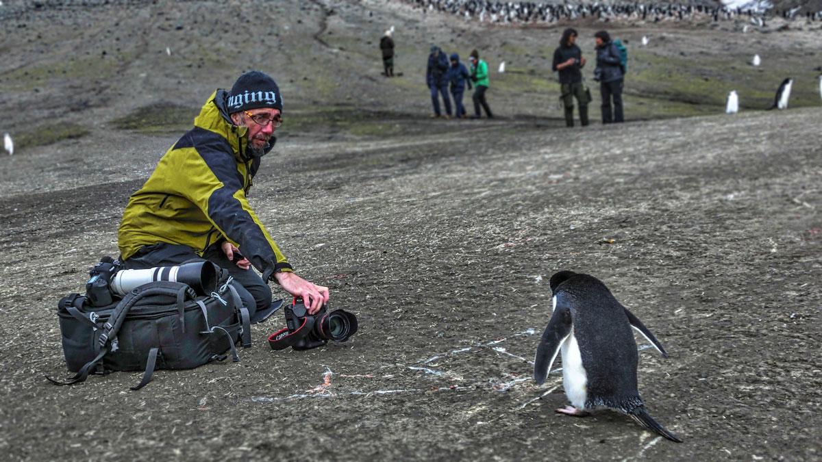 jan shooting a penguin